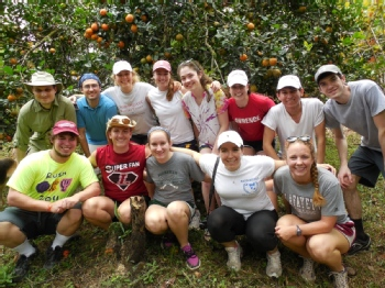 Volunteer with La Gran Vista Agroecological Farm
