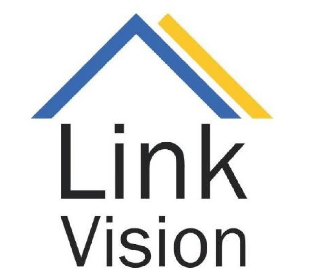 Volunteer with Link Vision Inc