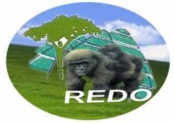 Volunteer with Rural Environment and Development Organization(REDO)