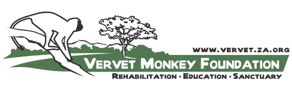 Volunteer with Vervet Monkey Foundation