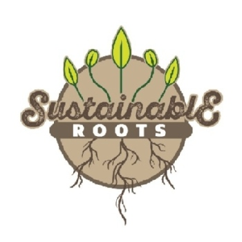 Volunteer with Sustainable Roots Ecuador