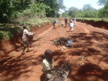Volunteer with Malava Community Forest Association
