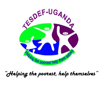 Volunteer with TESDEF UGANDA