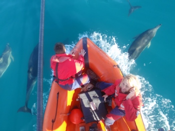Volunteer with Cetacean Research & Rescue Unit (CRRU)