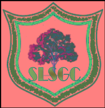 Volunteer with Sierra Leone School Green Club