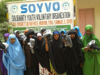 Volunteer with Solidarity Youth Voluntary Organization (SOYVO )