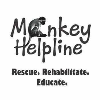 Volunteer with Monkey Helpline